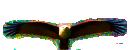 Aerien - Ornithologie