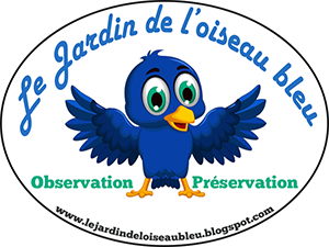 Le jardin de l'oiseau bleu