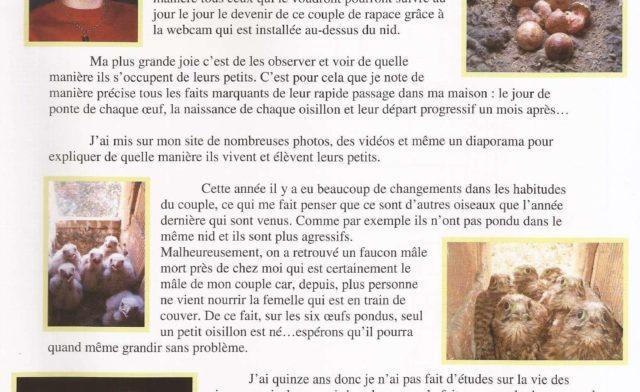 Cyril BOUR faucons Théding webmaster