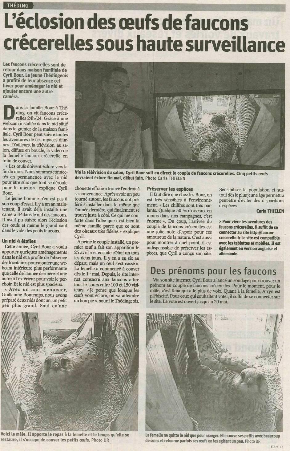 Cyril BOUR faucons Théding républicain Lorrain 2018