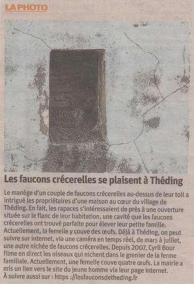 Faucons Théding Républicain Lorrain 2018
